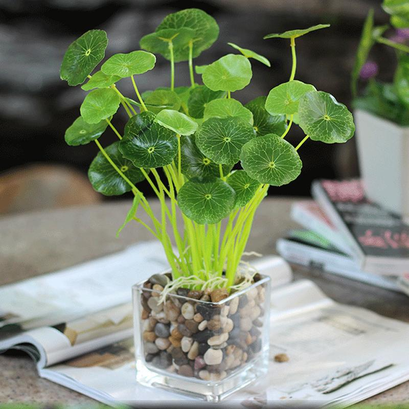 APRICOT Branches Green Lotus leaf Imitation Fern Plastic Artificial Grass Leaves Plant for Home Wedding Decoration Arrangement(China (Mainland))