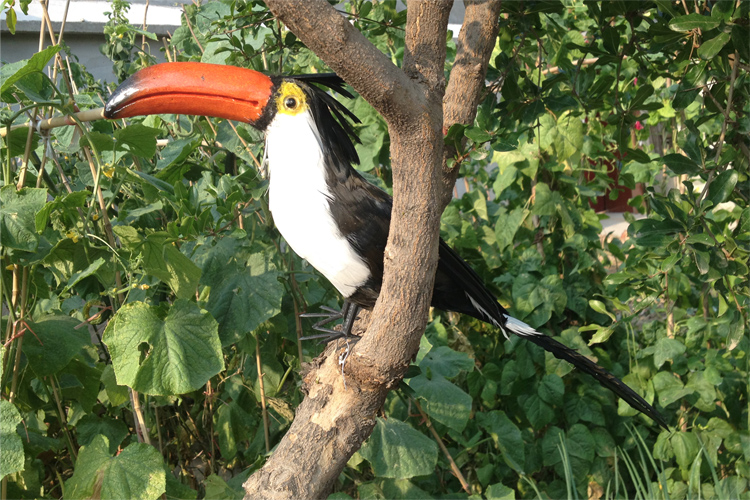 creative new simulation Toucan model foam&amp;furs black bird doll gift about 43cm 0939<br>
