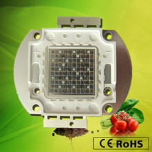 Free shipping New Arrival DIY growing High power led red blue light beads 50w led plants grow lights chip