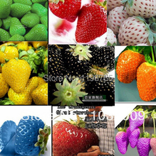 Big Promotion! 100pcs 30kinds mixed for Chose SuperBig climbing strawberry seeds vegetable Fruit seed of a seedlings(China)
