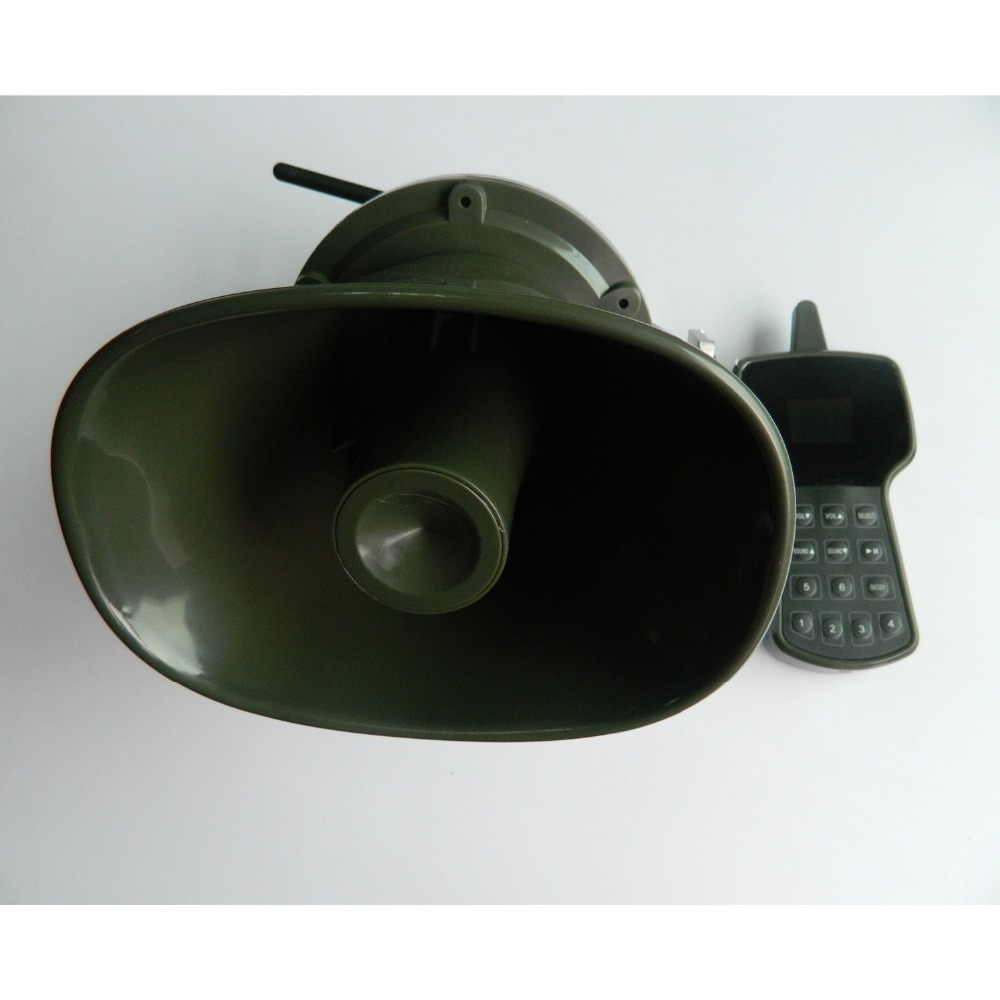 DSCN5423