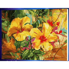 DIY Modular pictures Paint By Numbers Digital Oil Painting On Canvas handwork gift set of flower and apple 40X50CM w303