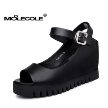 MOOLECOLE Women's Concise Shoes Heel Height 8CM Buckle Strap Shoes Factory Direct Selling Size EUR35-39 Model 70108(China)