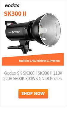 Godox-SK300II