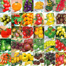 Rare 30 Types of Different Gardening Tomato Organic Seeds, 30 Original Packs, Tasty Excellent Good Vegetable Fruit Seeds E3050