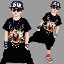 2 Piece 2017 Summer Kids Clothes Sets Boys Cool Boys 3 D Funny T Shirt Animal Printed Cotton Toddler Boys Clothing Harem Pants(China)
