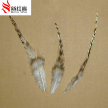 200 pcs 10-15cm natural color grizzly stripe chicken plumage feathers for jewelry making bulk sale