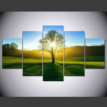 5 Pieces Wall Art Morning Sunshine HD Picture Home Decoration Canvas Print Green Tree Grassland Scenery Paintings IM-317
