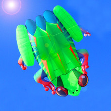 free shipping high quality 3D eyes frog soft kite with handle line outdoor toys weifang kite factory new octopus kitesurfing