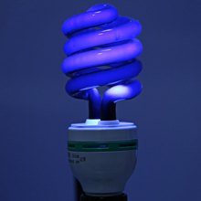 40W36W/20W Professional Light 48V Spiral Energy Saving Black Light Plug Wire Light with UV Traps Inpects
