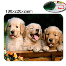 Animals Cat Kitten Dog Golden Retriever Puppy Mousepad,Custom Rectangular Mouse Pad in 220*180*2mm - office accessory and gift(China)