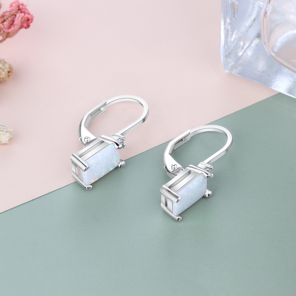 925 Sterling Silver Hoop Earrings (8)