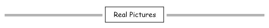 1 Real Pictures