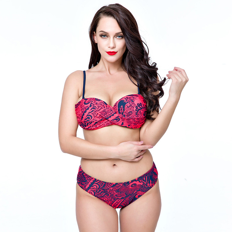 2017 New Design Women Plus Size Swimsuit High Quality Bathing Suit Push Up Biquini Women Super Large Cup Swimwear Sexy Bikinis<br><br>Aliexpress