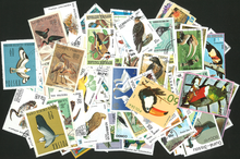 Lot 250pcs Bird Used Special Worldwide Stamps With Postage Mark Good Condition No Repeat Original Post Stamp