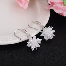 2017 NEW 925 silver Jewelry Authentic Swarovski teardrop snow crystal earrings crystal from Swarovski Ladies Fashion Earrings(China)