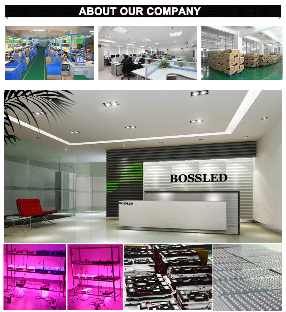 LED-grow-light