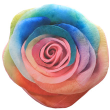CAMMITEVER Eternal Rose Flower Cushions Rainbow Floral Sofa Cushion Super Soft Short Plush Home Living Hot Sale Drop Shipping(China)