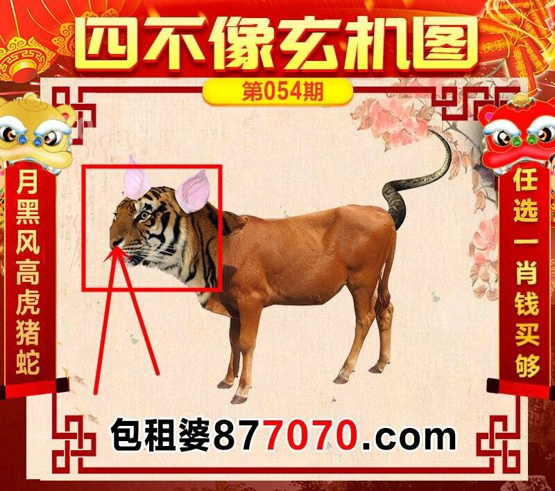 HTB1XQf5XlCw3KVjSZFlq6AJkFXah.jpg (800×709)