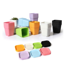 10pcs Mini Square Plastic Plant Flower Pot Home Office Decor Planter Colorful With Pots Trays Green Plant Artificial