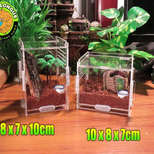 Crystal Acrylic Herp Pet Cage,terrarium reptile Small mosquera acrylic pet feeding box scorpion scollops pet box 7 x 8 x 10cm(China)