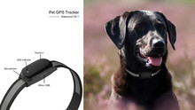 Mini Dog Cat Pet GPS Tracker Long Standby Time / IOS / Andriod App Free Website Service, With Retail Box Package