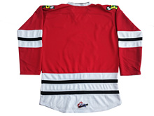 Custom Portland Winterhawks With your name and number Stitched Red Hockey Jersey