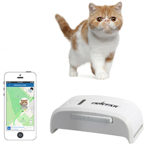 Mini GPS Dog Pet Tracker Device With Google map Free tracking System on mobile phone APP or PC(China)