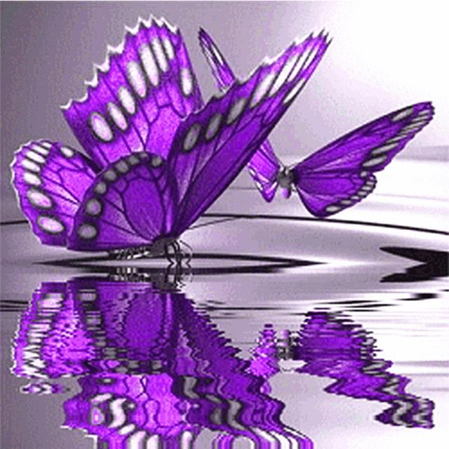 product-image-664534131_1024x1024