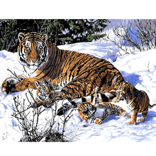 Digital Diy oil painting by numbers snow tiger wall decor picture on canvas oil paint coloring by number drawing animals 8024