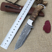 Damascus Blood Fox Fixed Blade Knife with Damascus Steel High Quality Steel Hunting Knife EDC Knife with Excellent Leather Sheat(China)