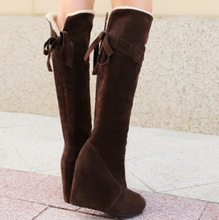High Heel Shoes Winter New Faux suede fur Snow boots women wedge heels over the knee boots