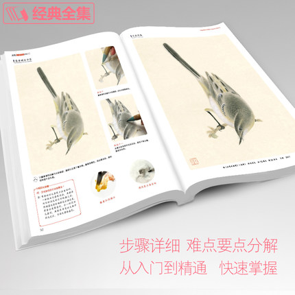 2018 Meticulous Birds and flowers Techniques Getting Started Basic Tutorials Books Chinese Gongbi Paintings colored Peony