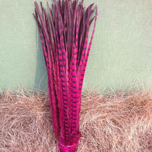 Wholesale 100pcs/lots pretty Dyed 55-60cm/22-24''' copper chicken feather Rose pheasant Tail feathers