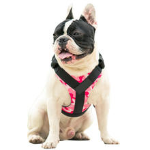 Buy Treat Me,Professional Dog Harness Vest,New Pet Products Net Cloth,Comfortable Pet Harness,Medium Large Dogs Chest Straps for $8.52 in AliExpress store