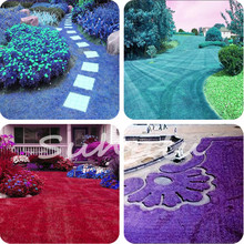 Cheap Lawn Turf Seed 500Pcs Grass Seeds Fresh Colorful Soft Runner Turfgrass for Home Park Soccer Golf Place Plantas Para Jardim
