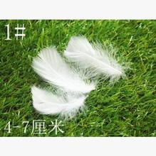 Pure white 1# small natural chicken wing feather 4-7cm 100pcs/pack Mask jewellery/clothing/shoes/hat accessories Free shipping(China)