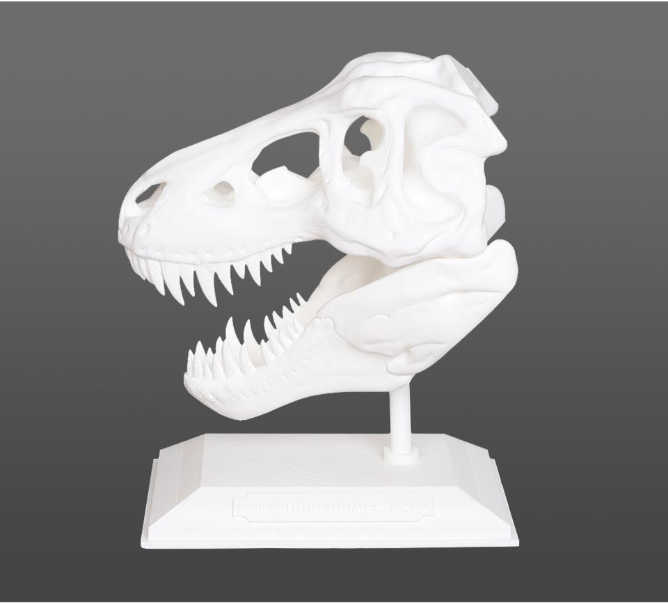 T-Rex-2+_23