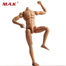 "Dragon 1:6 Scale Nude Body Male Narrow Shoulder Muscle Man 12"" Figure Neo-3 Human Figure Body F 1/6 head sculpt Doll Toys(China)"