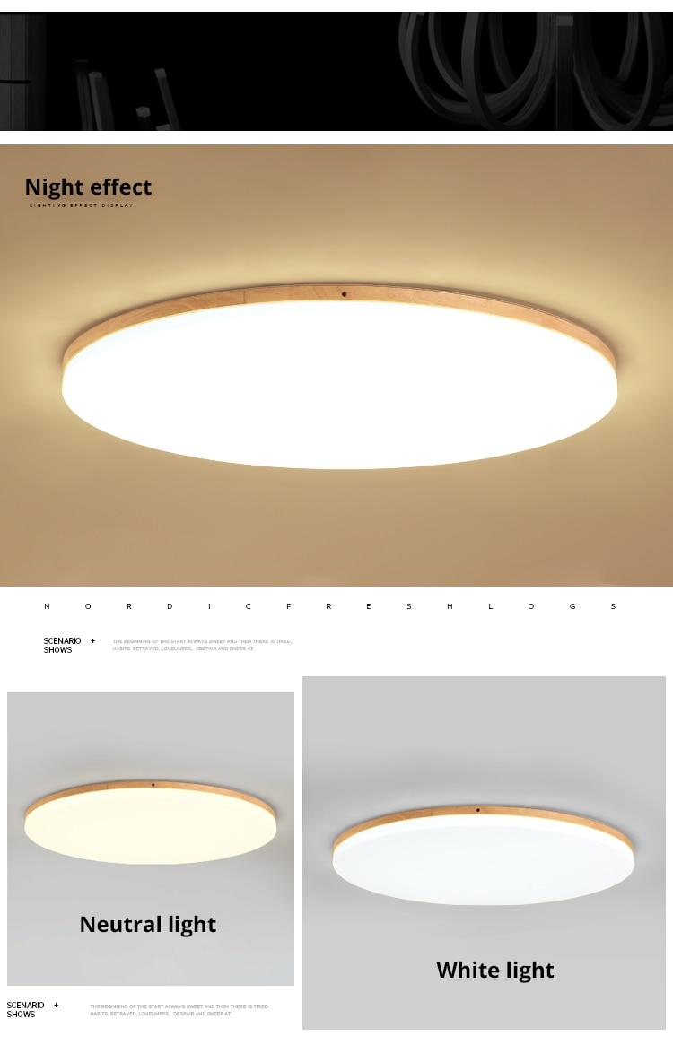 led ceiling light (10)