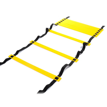 12 Rung 6M Football Training Speed Agility Ladder Black Straps Training Ladder Step Soccer Accessories(China)