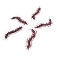 Wholesales Practical Gags Jokes Horror Halloween Props Tricks  Simulation Centipede Model Fake Insect Bug Toy 5pcs/lot