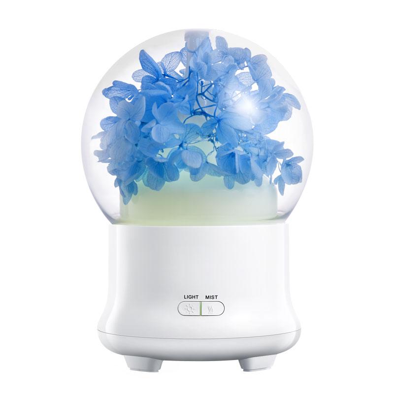 air humidifier (8)
