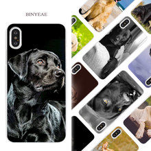 Buy BINYEAE Labrador Retriever dog Hard White Phone Case Cover Coque Shell iPhone X 6 6S 7 8 Plus 5 5S SE 4 4S 5C for $1.49 in AliExpress store