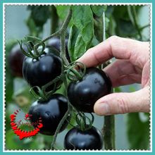 20 Black tomatoes seeds rich aroma Ornamental and Juicy C095