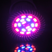 10W 15W 20W E27 Led plant growing lamp indoor plants grow light for hydroponic garden greenhouse(China)