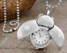 YCYS-Silver Pocket Watch Necklace Ladybug Openings(China)