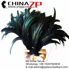 Leading Supplier CHINAZP Wholesale Chicken Feathers 30 to 35cm Prime Natural Rooster Tail Feathers for Carnival Headpieces(China)
