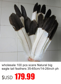 Wholesale 10//50//100pcs High Quality Natural Rare Pheasant Tail Feathers 30-180cm