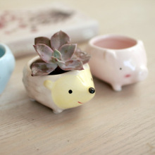 Cute Little Animal Green Plant  Pot Hole Mini Hedgehog Ceramic Flower Desktop Decro
